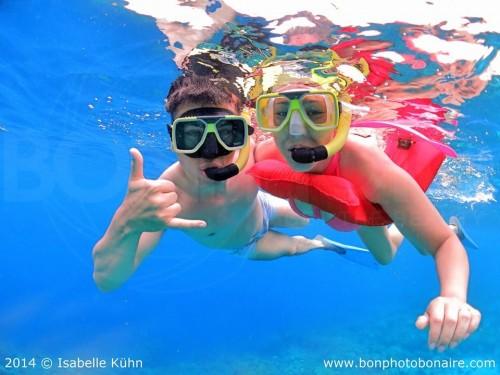 seacow snorkel bonaire
