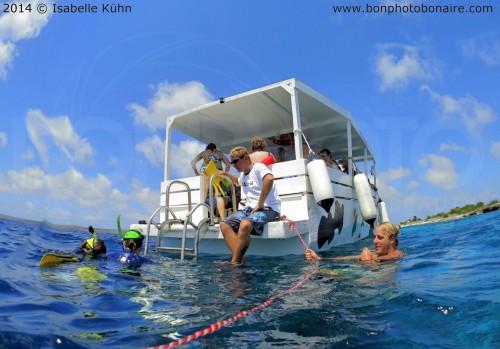 Seacow-snorkel-bonaire-2