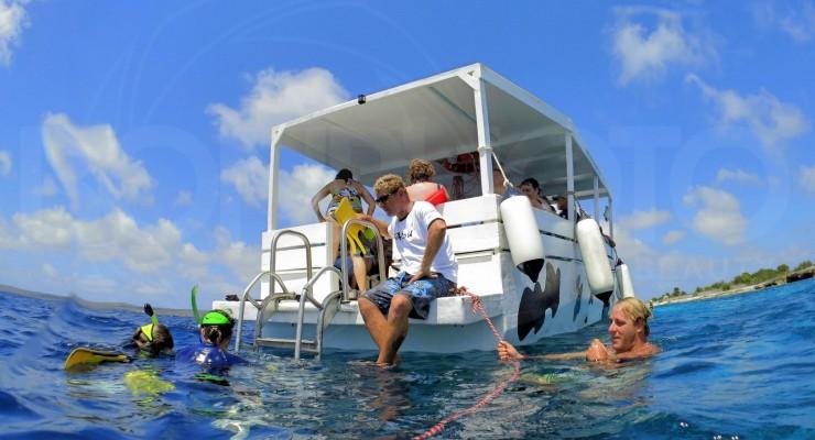 Seacow Snorkeling Bonaire