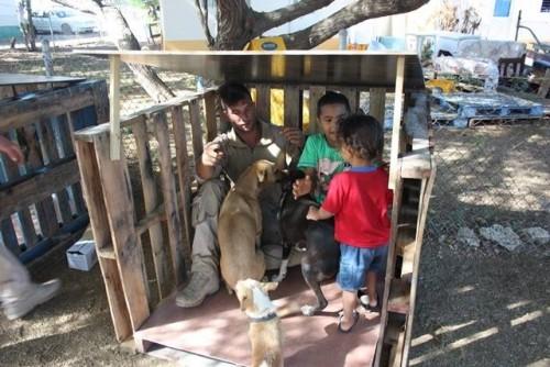 dierenbescherming bonaire 2