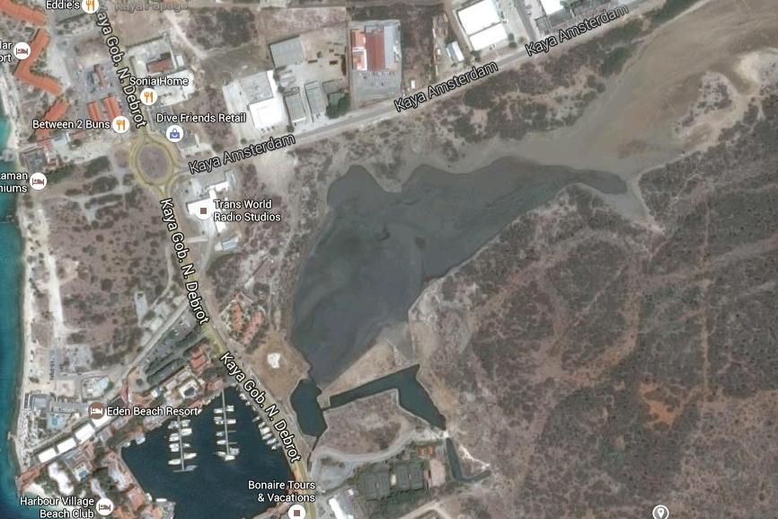 Stinapa bezorgd over natuurgebied Salinja di Vlijt