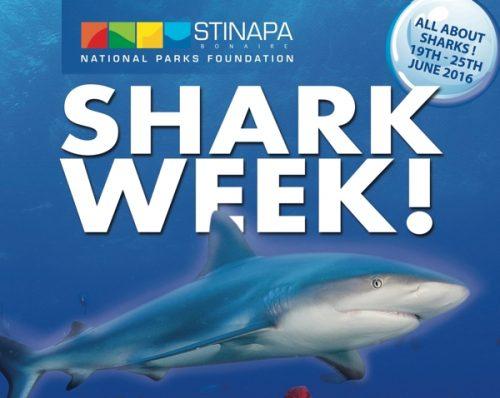 Bonaire Shark Week
