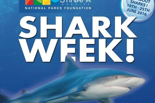 Shark Week header