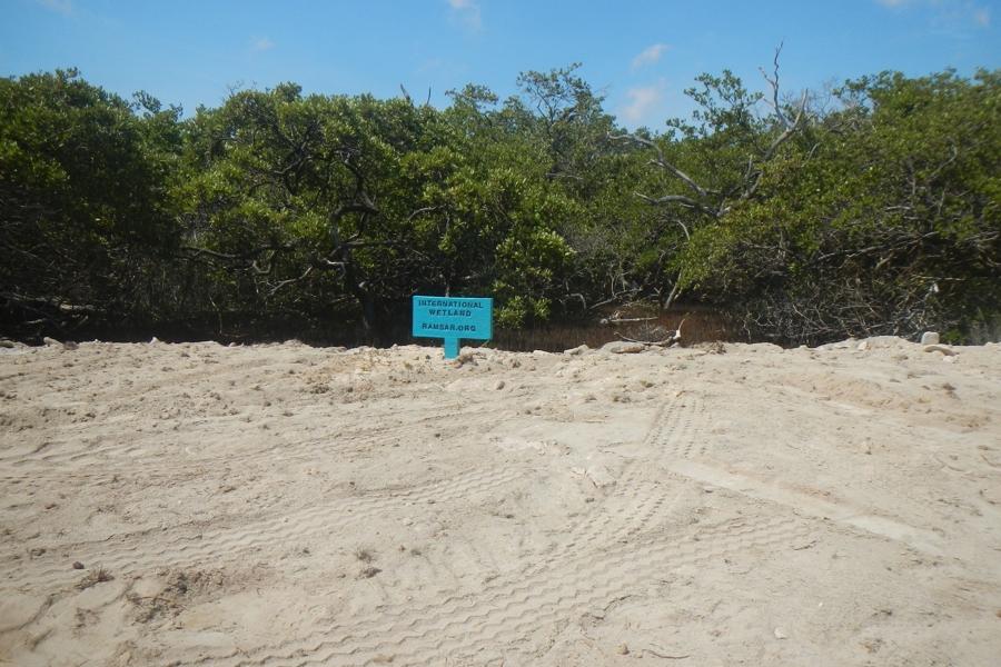 Ecologisch Herstel Lac gebied en Zuidelijk Bonaire