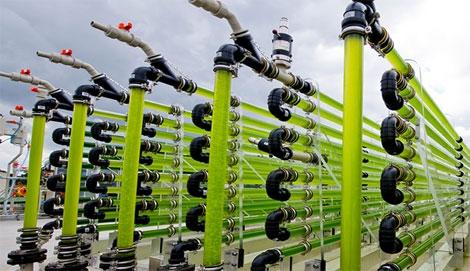 Nieuw onderzoeksfaciliteit voor duurzame brandstof op Bonaire