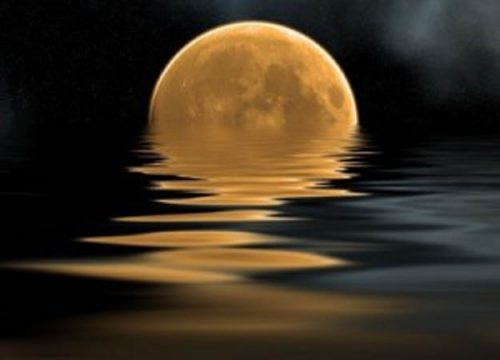 Full Moon walk @ Washington Slagbaai National Park