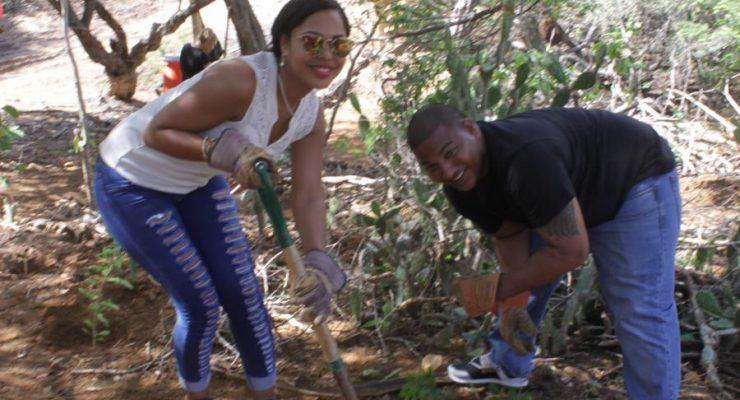 Begin dit jaar goed en help ons bos groeien