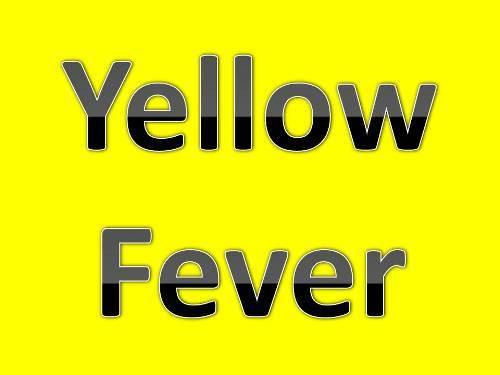 Gele koorts in Brazilië