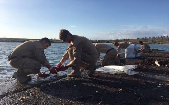 Defensie helpt bij opruimen olievervuiling op Bonaire