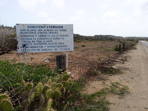 LVV Bonaire onder de loep