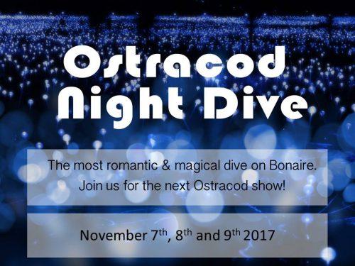 Ostracod Night Dive @ Goood Dive | Kralendijk | Bonaire | Caribisch Nederland