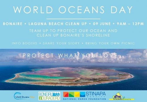 World Ocean Clean up Day @ Laguna Beach
