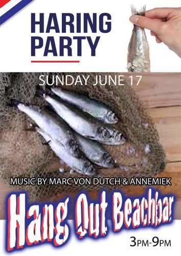 Haring Party @ Hang Out Beach Bar