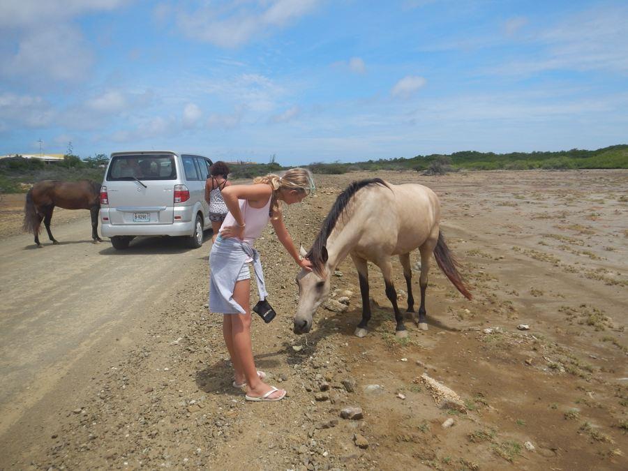 Zomervakantie op eigen eiland Bonaire deel 4