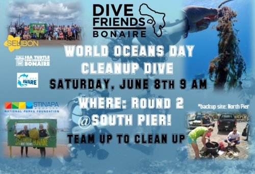 World Oceans Day Cleanup Dive