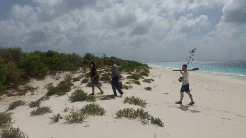 Klein Bonaire Walking Tour