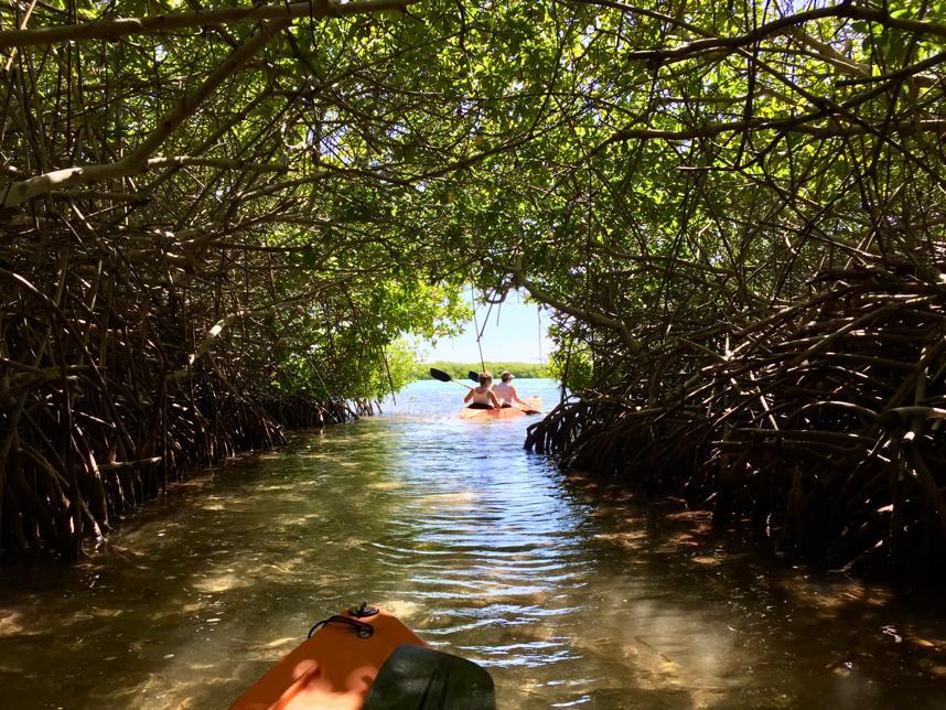 Tips voor een goede voorbereiding op een vakantie naar Bonaire