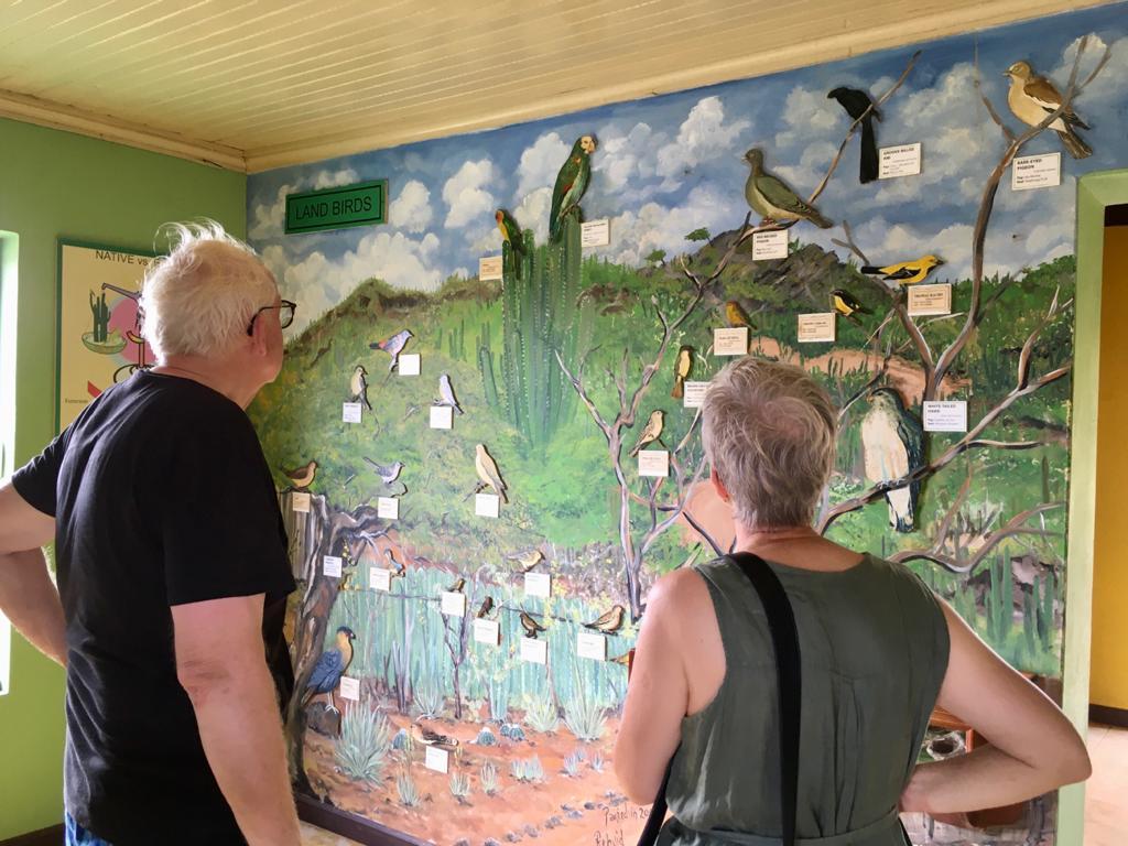 Tips voor een dag naar Washington Slagbaai Nationaal Park