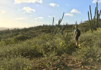 De 5 mooiste wandelroutes op Bonaire