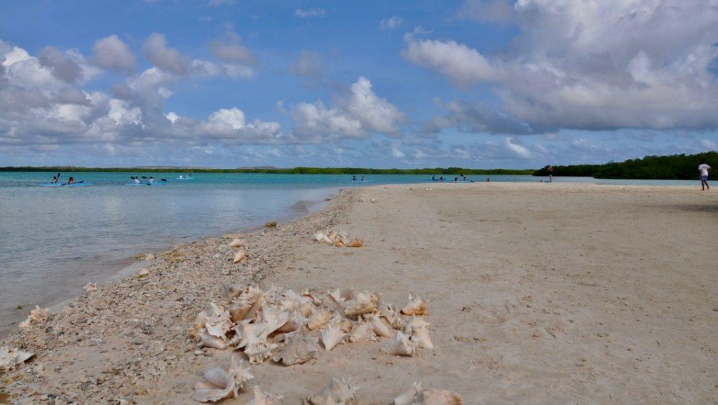 BC: Bonaire aantrekkelijker maken voor ecotoerisme