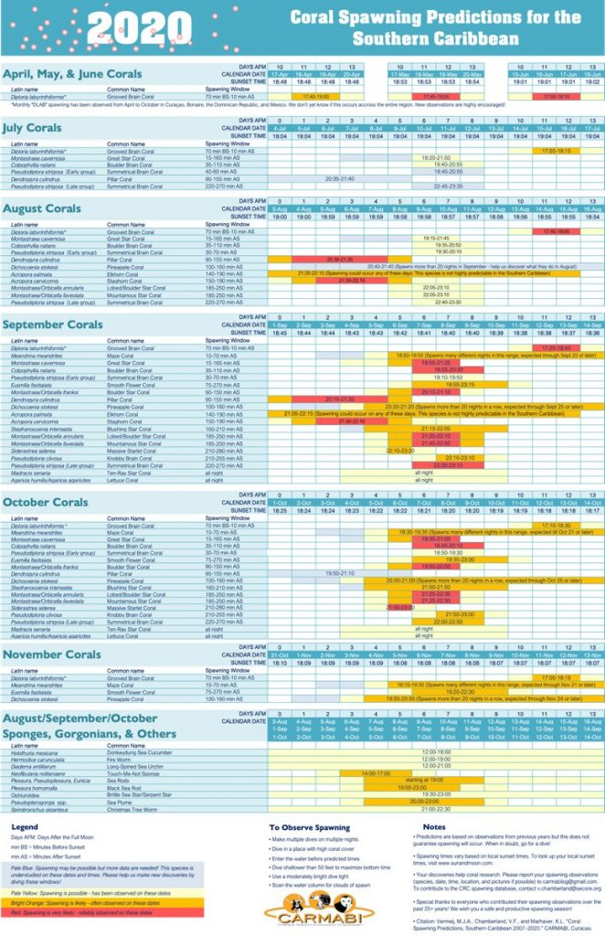 Voorspellingskalender Kuitschieten van het Koraal voor Zuid-Caraïben