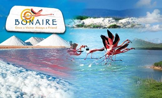 Vakantie naar Bonaire. Dit zijn de leukste accommodaties in 2021