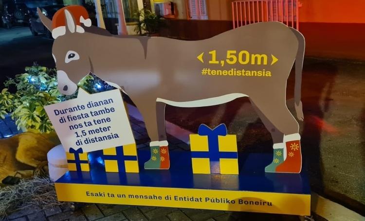 De ezel staat centraal in de Covid-19 kerstcampagne van het OLB