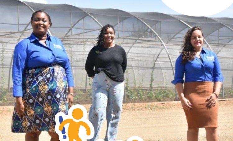 Meer sociale werkplekken bij Fundashon Krusada