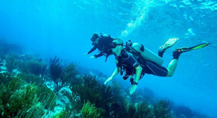 Leer duiken op Bonaire