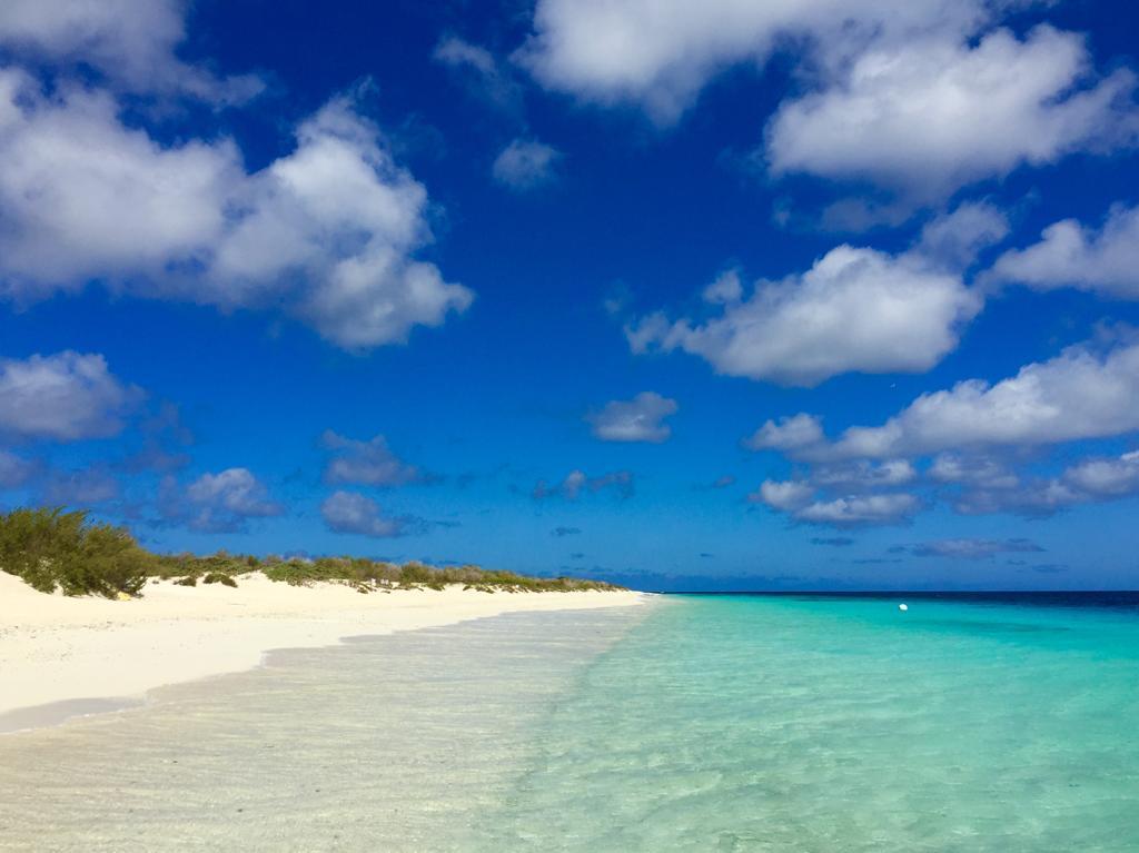 Top 10 van de leukste excursies op Bonaire