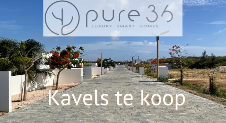 Pure36 Kavels