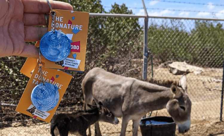 NOBO ontwikkelt sleutelhanger voor Donkey Sanctuary Bonaire